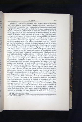 Image of Darwin-F920-1876-255