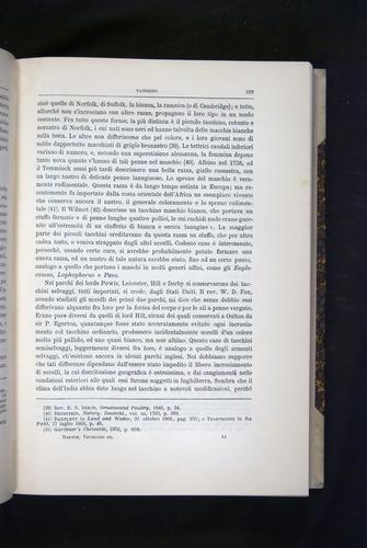 Image of Darwin-F920-1876-257