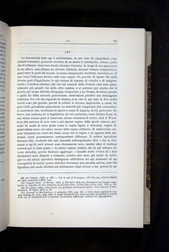 Image of Darwin-F920-1876-261