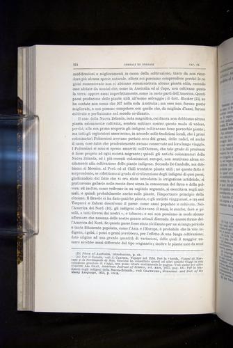 Image of Darwin-F920-1876-274