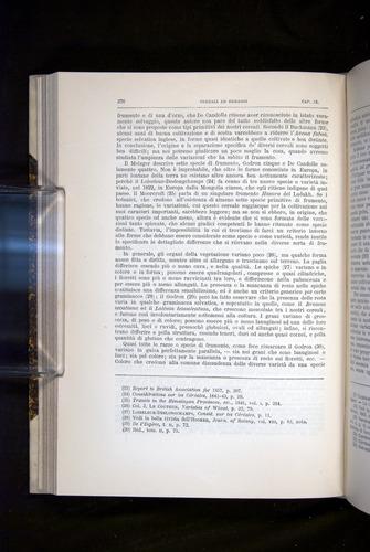 Image of Darwin-F920-1876-276