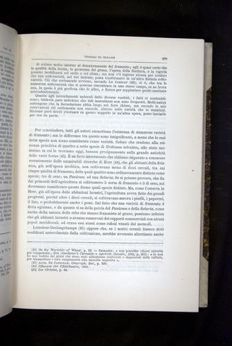 Image of Darwin-F920-1876-279