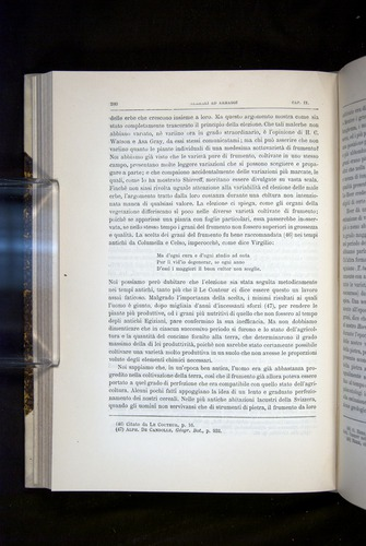 Image of Darwin-F920-1876-280