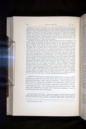 Image of Darwin-F920-1876-284