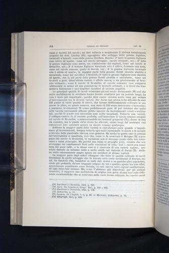 Image of Darwin-F920-1876-286