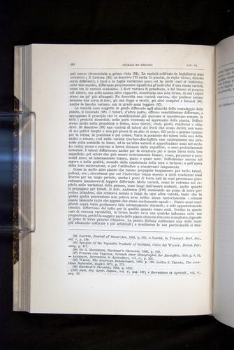 Image of Darwin-F920-1876-292