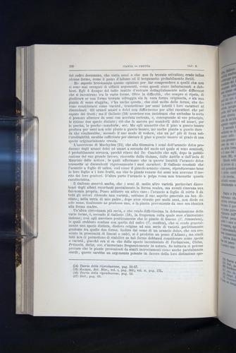 Image of Darwin-F920-1876-298