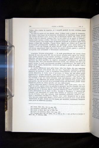 Image of Darwin-F920-1876-306
