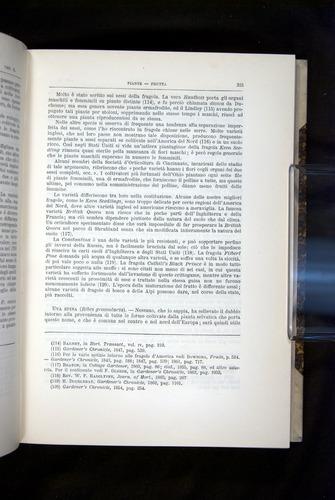 Image of Darwin-F920-1876-315