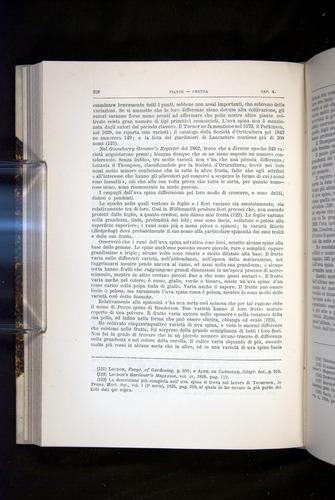 Image of Darwin-F920-1876-316