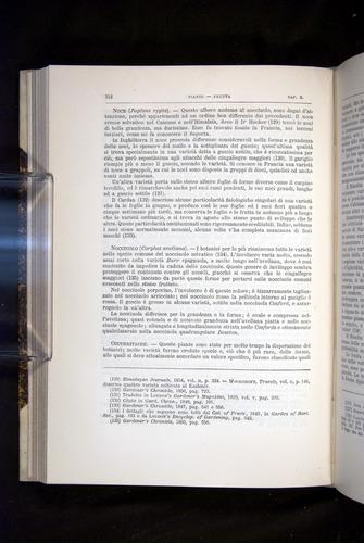 Image of Darwin-F920-1876-318
