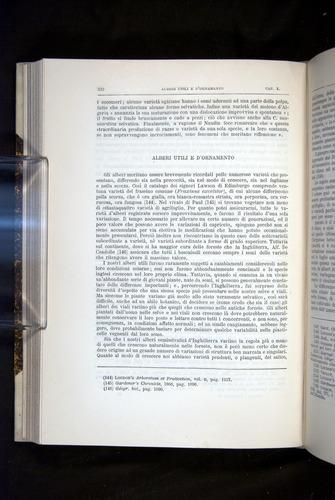 Image of Darwin-F920-1876-322