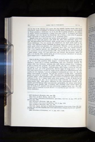 Image of Darwin-F920-1876-324