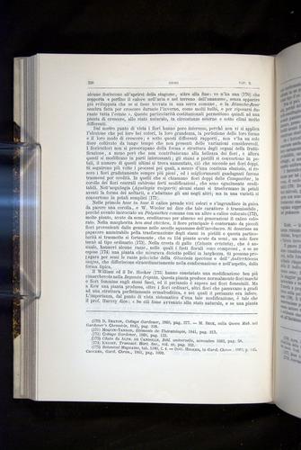 Image of Darwin-F920-1876-326