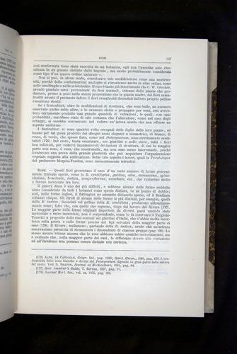 Image of Darwin-F920-1876-327