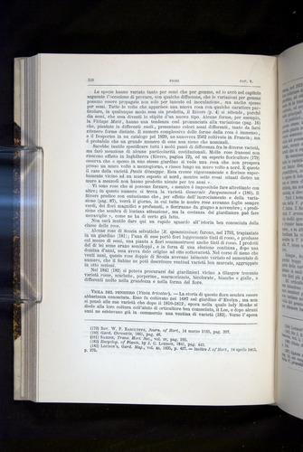 Image of Darwin-F920-1876-328