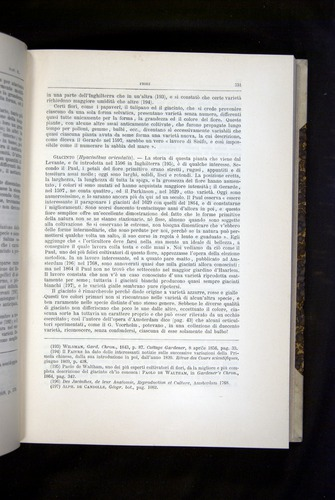 Image of Darwin-F920-1876-331