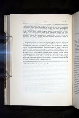 Image of Darwin-F920-1876-332