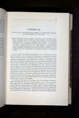 Image of Darwin-F920-1876-333