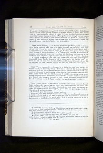Image of Darwin-F920-1876-336