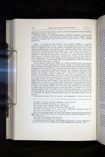 Image of Darwin-F920-1876-340