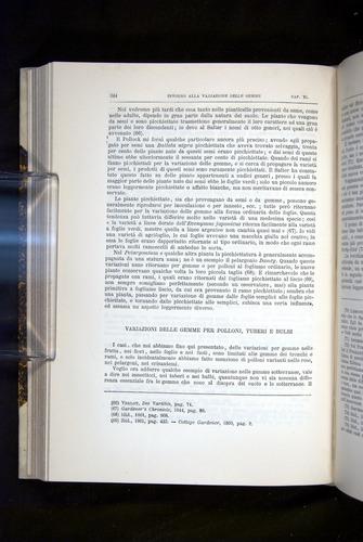 Image of Darwin-F920-1876-344