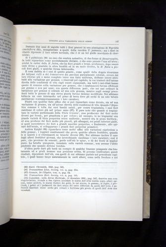 Image of Darwin-F920-1876-347