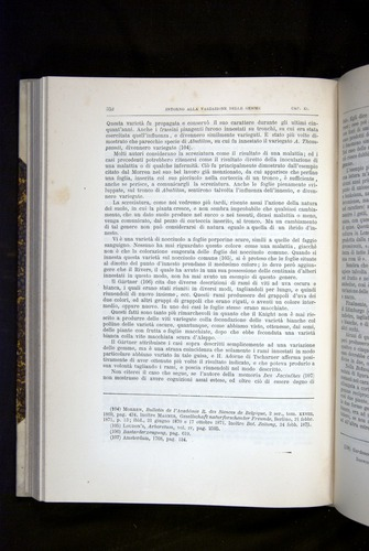 Image of Darwin-F920-1876-352