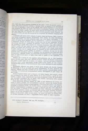 Image of Darwin-F920-1876-353
