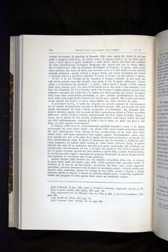 Image of Darwin-F920-1876-358