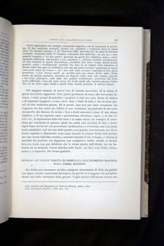 Image of Darwin-F920-1876-359