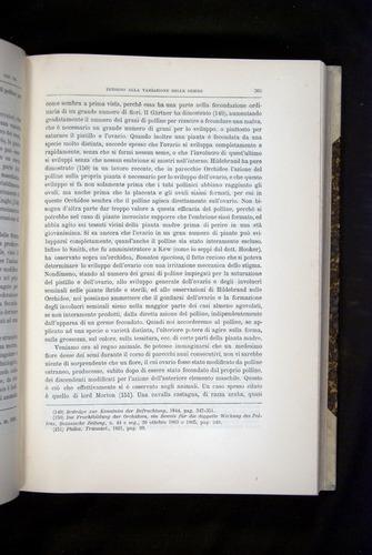 Image of Darwin-F920-1876-365