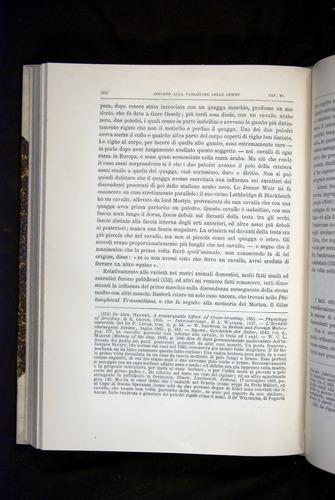 Image of Darwin-F920-1876-366
