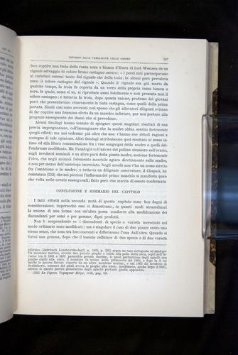 Image of Darwin-F920-1876-367