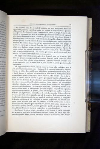 Image of Darwin-F920-1876-371