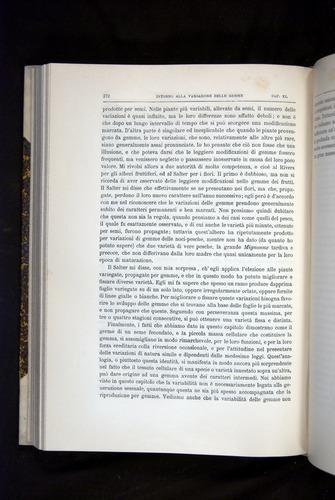 Image of Darwin-F920-1876-372