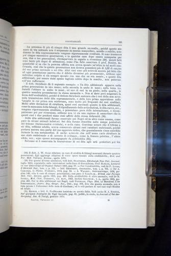 Image of Darwin-F920-1876-385