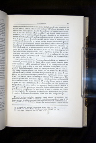 Image of Darwin-F920-1876-387