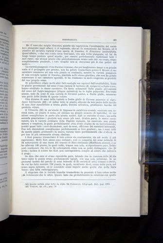 Image of Darwin-F920-1876-389