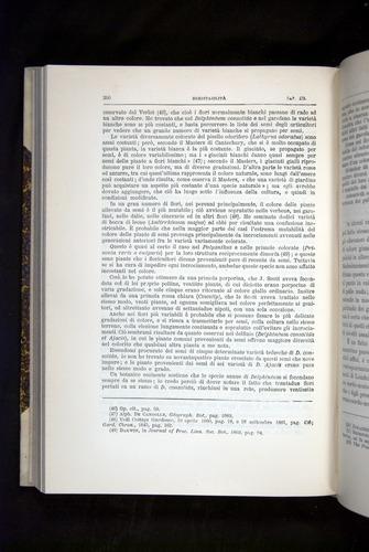 Image of Darwin-F920-1876-390