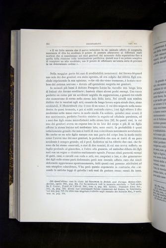 Image of Darwin-F920-1876-394