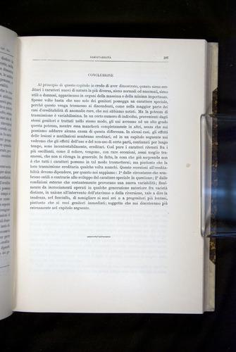 Image of Darwin-F920-1876-397