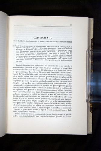 Image of Darwin-F920-1876-399