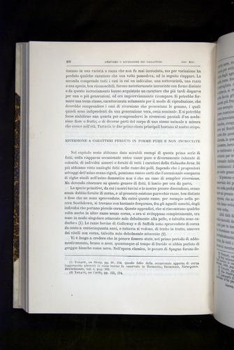 Image of Darwin-F920-1876-400