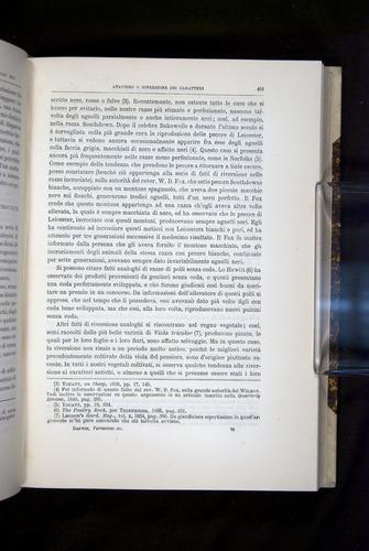 Image of Darwin-F920-1876-401