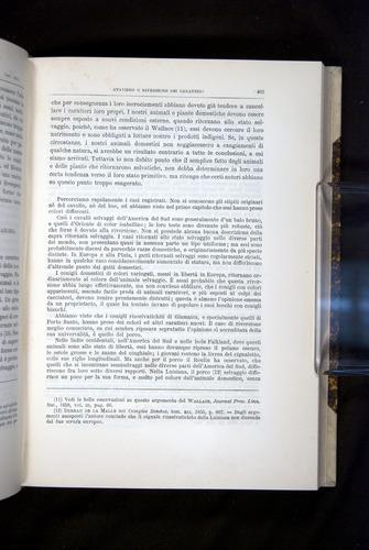 Image of Darwin-F920-1876-403