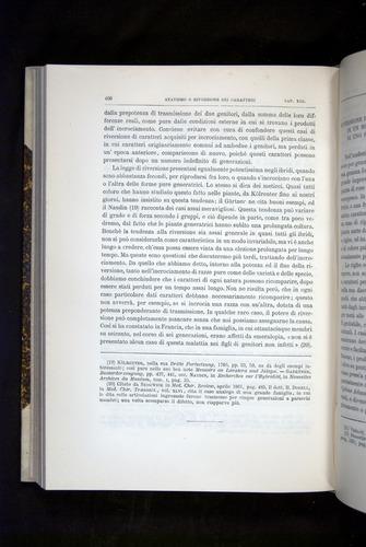 Image of Darwin-F920-1876-406