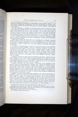 Image of Darwin-F920-1876-411