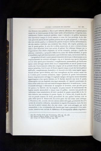 Image of Darwin-F920-1876-414