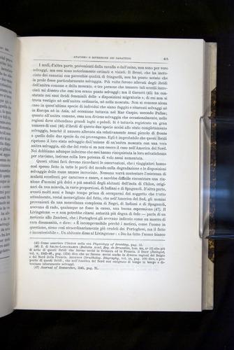 Image of Darwin-F920-1876-415